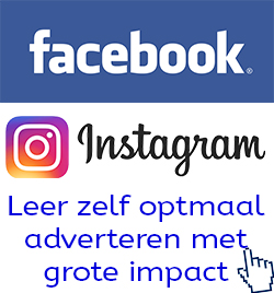 social media adverteren via Facebook en Instagram brainy nl